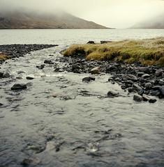 stream (lawatt) Tags: creek fjord rain eyri ingolsfjordur árneshreppur westfjords iceland film 120 portra 400 hasselblad 80mm
