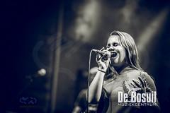 2018-06-28 Drieklank WWW_4612-Johan Horst-WEB