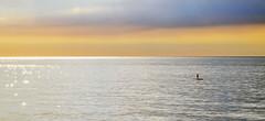 Explorar los márgenes, abandonar la cuadrícula / Explore the margins, leave the grid (PURIFM) Tags: sea mar sky glitter water nikon nature sunset sun amanecer sol loneliness soledad brillo dawn