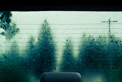 ominous (jillian rain snyder) Tags: trees oregon pnw nature window condensation