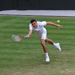 Fritz 3 20180705 (Steve TB) Tags: canon eos7dmarkii wimbledon 2018 tennis grandslam no1court fritz taylor taylorfritz