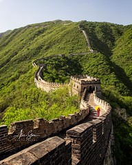 Discovering The Great Wall (Mutianyu, China 2016) (Alex Stoen) Tags: alexstoenphotography amazing asia bestdestination breathtaking canoneos1dx china culture defense ef2470mmf28liiusm geotagged greatwall heritage mutianyu souvenir travel vacation wall icon moment tourism