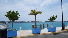 20180711_133757 (Tammy Jackson) Tags: bermuda holiday vacation