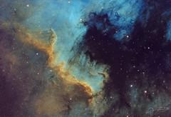 Cygnus Wall - SHO (Alejandro Pertuz) Tags: nebula space hubble cosmos universe astronomy astrophotography science telescope camera longexposure filter astrometrydotnet:id=nova2661122 astrometrydotnet:status=solved