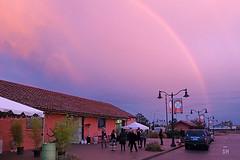 16-Oct_345-72 (Scott Hess) Tags: pac petaluma arts center rainbow frolic