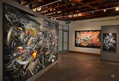 13-Mar _996x-72 (Scott Hess) Tags: cosmic terrain gallery petaluma arts center