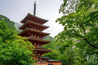 Hse-dera Temple,Nara,Japan
