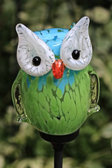Glass Frog Ornament (hank278) Tags: glass ornament owl canon