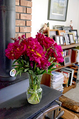 Peonies and Snapdragons 0057 (Donna's View) Tags: nikon d3300 peonies snapdragons flowers bouquet antirrhinum paeonia