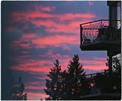 Balconies & Trees in Sunset Sky ... (Irene, W. Van. BC) Tags: balconiestreesinsunsetsky sunset sunsets sunsetskies sunsetclouds sunsetoutlines summer sky skies skyline redsky skyscenes trees treesilhouettes treebranches treesinsunsetskies balcony balconies outdoors outdoorscenes wonderfulnature beautifulnature 1001nights 1001nightsmagiccity 1001nightsmagicwindow bluehoursky