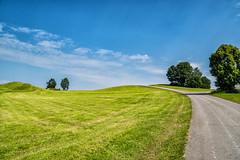 Hügel bei Pfronten (stefangruber82) Tags: alpen alps bavaria bayern green hill hügel grün