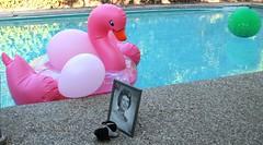 Swan & Pinks For Flora Birthday (shiroibasketshoes hopper) Tags: birthday mother tribute memory memorial love bunny rabbit photo memories pool raft swan pink green balloons water