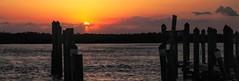 Waiting for me? (Kathryn Louise18) Tags: canon kathrynlouise florida sunrise sunset seascape landscape coastel beach pilings nsb newsmyrnabeach edgewater