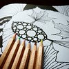 The Amazing BLACK World of Leaves (Neringa-B) Tags: coloring colouring book leaves patterns