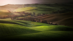 Tuscan countryside (Massetti Fabrizio) Tags: sunrise sun sunlight sanquirico pienza panorami nikond3 fabriziomassetti famasse hills heritage tuscany toscana tree tramonto landscape landscapes light italia italy siena