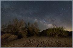 Desert Solitude 1006 (maguire33@verizon.net) Tags: california coloradodesert lll meccahills milkyway paloverde sonorandesert galaxy lightpollution stars unitedstates us