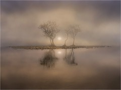 Three Trees (adrians_art) Tags: lakeullswater cumbria lakedistrict pooleybridge trees wather foggy misty boats water reflections silhouettes shadows sky clouds dawn sunrise uk england plants