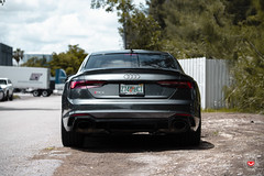 Audi RS5 - Vossen Forged M-X2 Wheels - © Vossen Wheels 2018 - 1009 (VossenWheels) Tags: a4 a4aftermarketforgedwheels a4forgedwheels a4wheels a5 a5aftermarketforgedwheels a5aftermarketwheels a5forgedwheels a5wheels audi audia4 audia4aftermarketforgedwheels audia4aftermarketwheels audia4forgedwheels audia4wheels audia5 audia5aftermarketwheels audia5aftermarketforgedwheels audia5forgedwheels audia5wheels audiaftermarketwheels audiforgedwheels audirs4 audirs4aftermarketforgedwheels audirs4aftermarketwheels audirs4forgedwheels audirs4wheels audirs5 audirs5aftermarketforgedwheels audirs5aftermarketwheels audirs5forgedwheels audirs5wheels audis4aftermarketwheels audis4forgedwheels audis4wheels audis5 audis5aftermarketwheels audis5forgedwheels audis5wheels audiwheels forgedwheels mx mxseries mlx3 rs4 rs4aftermarketforgedwheels rs4aftermarketwheels rs4forgedwheels rs5aftermarketforgedwheels rs5aftermarketwheels rs5forgedwheels rs5wheels s4forgedwheels s4wheels s5 s5aftermarketforgedwheels s5aftermarketwheels s5forgedwheels s5wheels vossenforged vossenforgedwheels vossenwheels rs5 ©vossenwheels2018