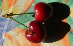 twins (Dora 913) Tags: refreshment macromonday flickrfriday twins