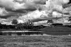 Brasil - MG, Ipatinga - Parque Ipanema! (jvaladaofilho) Tags: cenasurbanas cityscape streetview streetphotography blackwhite monochrome pretoebranco monocromatico brasil mg minasgerais ipatinga parqueipanema valadaoj