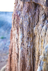 Cliff Face (wyojones) Tags: wyoming greybull lowershellcreekvalley shellcreekdome lowercretaceous siltstone sandstone shale claystone erosion badlandstopography cloverlyformation varicolored clff dropoff wall devilskitchen spires wyojones