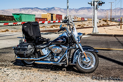 Harley-Davidson Heritage Softail | Mojave, California (M.J. Scanlon) Tags: business california canon capture cargo commerce digital eos engine freight harleydavidson haul heritage horsepower image impression landscape locomotive logistics mjscanlon mjscanlonphotography merchandise mojo move mover moving outdoor outdoors perspective photo photograph photographer photography picture rail railfan railfanning railroad railroader railway scanlon softail steelwheels super track train trains transport transportation up upmojavesubdivision unionpacific view wow ©mjscanlon ©mjscanlonphotography