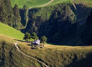 Alpine meadow after harvest