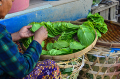Green betel for sale at rural market (phuong.sg@gmail.com) Tags: addiction addictive asia asian ayurveda background beat betel betle chewing cuisine eating eco essential evergreen flavor food fresh garnish green heart heartshaped herb herbal horizontal icon india indonesia ingredient isolated lanka leaf malaysia medical medicine myanmar natural piper sri stimulant tradition vietnam