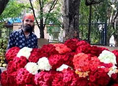 A Flower vendor..... . . . #bengaluru #sobangalore #namabengaluru #karnataka #photography #photoart #igersbangalore #newday #newthoughts #positivevibes #postivemind #sunshine #awesome #awesomeday #travel #travelphotography #streetphotography #vendor #flow (ps_avinash) Tags: namabengaluru sobangalore newday canonclicks flowerporn rose igersbangalore canonphotography positivevibes newthoughts beautyfulflower canon flowerstagram awesome photography travelphotography streetphotography bengaluru roselover awesomeday instaaddict mixedflowers sunshine photoart dslrphotography karnataka postivemind vendor travel