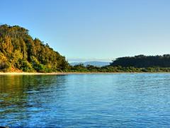 On the island VI (elphweb) Tags: hdr highdynamicrange nsw australia seaside sea ocean water forest bush tree trees wood woods beach sand sandy brouleeisland island