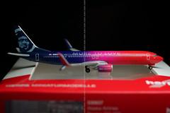 Alaska Airlines B737-800 N493AS 'More to Love' Herpa 1/500 (altinomh) Tags: alaska airlines b737800 n493as more love herpa 1500 boeing b737 737