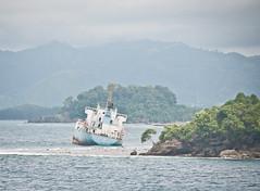 DSC_0786 (yakovina) Tags: silverseaexpeditions indonesia papua newguineaisland jayapura
