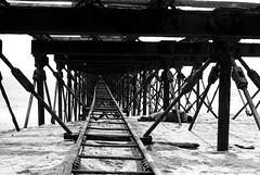 siesta (Drehscheibe) Tags: pier nikonf2 blackwhite hp5 landesteg abandoned rusty rails classicblackwhite film