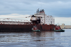 DSE_3089 (pezlud) Tags: 20180617 duluthharbor americanspirit groundedship shipaground ship grounded aground stoppedonly30ftfromseawall