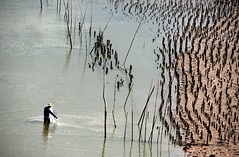 Oyster farm (MelindaChan ^..^) Tags: guangxi china 廣西 oyster farm lowtide chanmelmel mel melinda melindachan beach pattern plantation fisherman