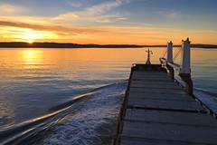 Inbound. (MSGS4) Tags: cork ringaskiddy ireland spliethoff floretgracht water sunset evening river harbour pilot tug