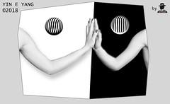 RIFLESSO IN UNO SPECCHIO NERO *YIN E YANG* (ADRIANO ART FOR PASSION) Tags: riflesso specchio specchionero yineyang mani hands adriano adrianoartforpassion sferefractal negativo positivo monocromo bn bw bwimage fotoinstudio elaborazione