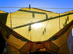 The Clothesline (Steve Taylor (Photography)) Tags: clothes shirt clothesline pegs rotary line digitalart yellow blue black orange cloth newzealand nz southisland canterbury christchurch northnewbrighton shadow silhouette