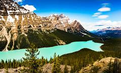 DSC02928-2 (heo1013) Tags: bowsummit banffnationalpark canadianrockies