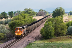 RR-20180626-BrushSub-30 (skyviewtim) Tags: bnsf9041 coalempty coloradorailroads coloradotrains tonville