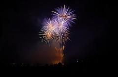 Feux artifice 14 juillet (Franck.Robinet) Tags: firework bastille day 14 juillet feux artifice night light fireworks lights france