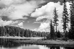 Hickey Lake in back and white (danhusseyphoto) Tags: duck mountain provincial park manitoba canada landscape blackandwhite summer lake hickey canadian parkland reflection trees forest clouds contrast stark high