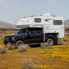 Shopping for New Tires... (Jeffrey Sullivan) Tags: toyo opencountry lt29565r20 bigfoot camper northernlite ford f350 superduty pickup truck harleydavidson edition spring wildflowers california usa canon eos 6d photo copyright 2017 jeff sullivan april easternsierra inyo county