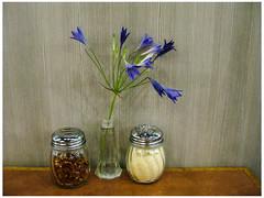 Condiment Bouquet (prima seadiva) Tags: condiments flower pizza udistrict