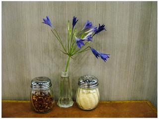 Condiment Bouquet