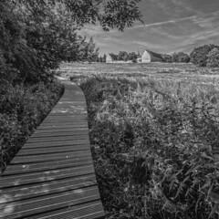 Colen Abbey (enneafive) Tags: colen borgloon belgium abbey crosiers cistercians monastery valley monochrome fujifilm xt2 bucolic pastoral caillebotis duckboards wideangle