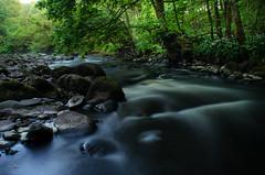 0890 (Csaba Varju) Tags: stream river denny scotland landscape d5100 nikon long exposure
