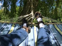 3306 Hammock fun (Andy - Not too busy) Tags: backgarden bbb ggg green hammock hhh trees ttt yard yarden yyy kent england wittersham