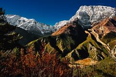 Annapurna III & IV (YogiMik) Tags: annapurna iii iv nepal himalaya mountains snowy caps trees green autumn valley yogimik awesome beautiful landscape nice view
