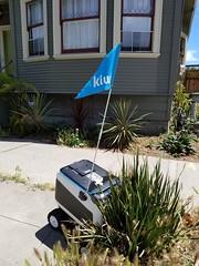 Stuck robot (quinn.anya) Tags: robot delivery kiwi stuck berkeley